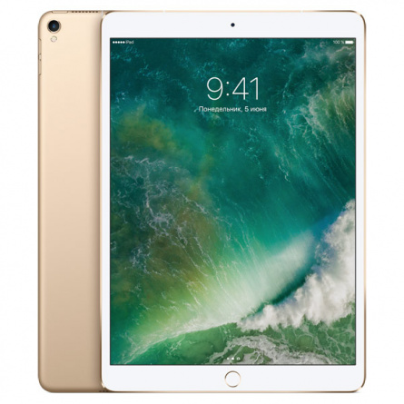 Планшет Apple iPad Pro 10.5 Wi-Fi 256Gb Gold фото 1